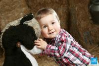 Photo d'un bébé faisant un calin à une peluche en shooting photo